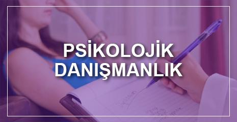 PSİKOLOJİK DANIŞMANLIK HİZMETLERİ